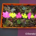 Yellow Leaves On Orange Box
